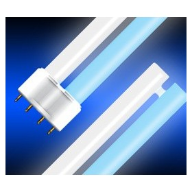 Fluo Compact 24W White/Blue