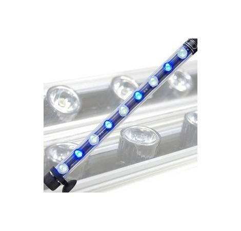 AQUALIGHT Tube LED Blanc/Bleu 9 Watts - 55cm