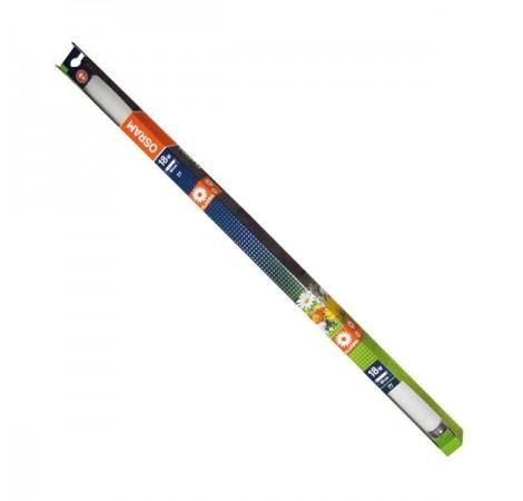 OSRAM Tube T8 Fluora 58 Watts - 1500mm