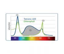 TETRA Tetronic Led Proline 980 Eau douce - 98 cm / 28 Watts