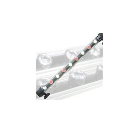 AQUALIGHT Tube LED Blanc/Rouge 9 Watts - 55cm