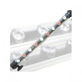 Tube Néon LED blanc/rouge 55 cm - 9 Watts
