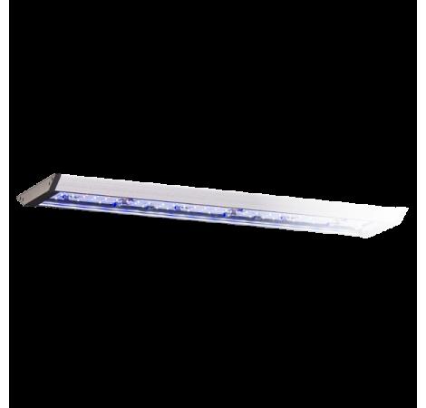 AQUA MEDIC Aquarius LED 90 Eau de mer