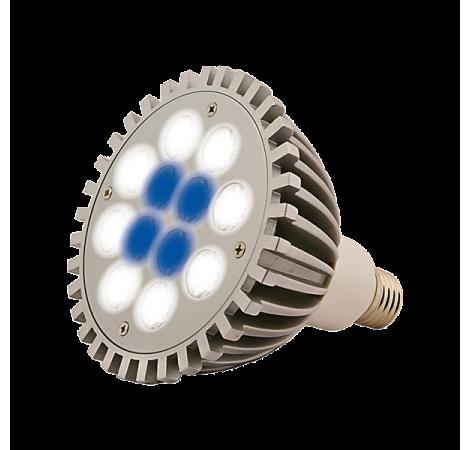 SOLDES - AQUA MEDIC Aquasunspot 12x1 Watts - 14000K°