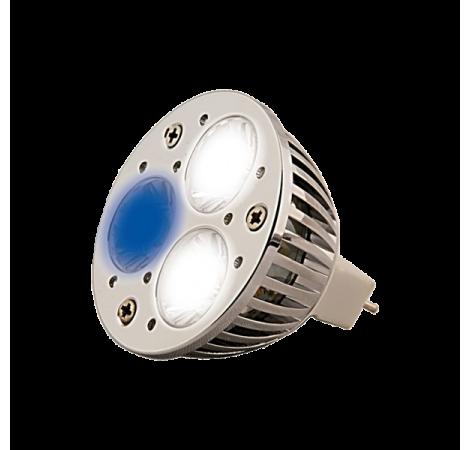 AQUA MEDIC Aquasunspot 3x1 Watts - 14000K°