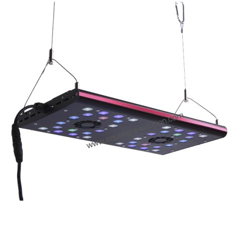 EVERGROW Rampe LED AquaOcean IT5040 - 120 Watts - 400mm