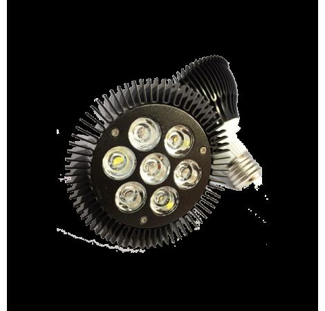 ASAQUA PAR30 Ampoule LED Eau de mer - 21 Watts