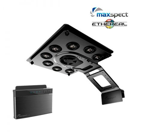 MAXSPECT ETHEREAL 130 Watts + Contôleur IV6