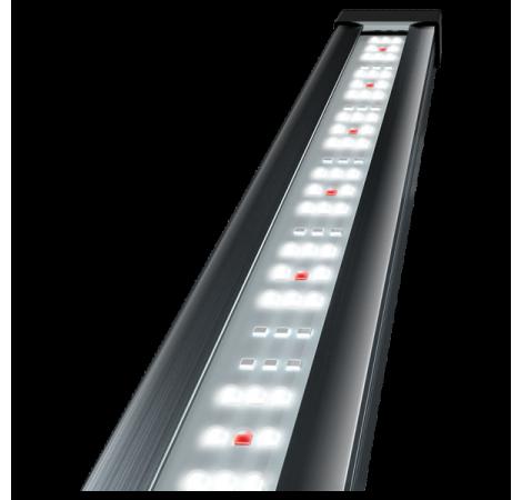 TETRA Tetronic Led Proline 580 Eau douce - 58 cm / 15 Watts