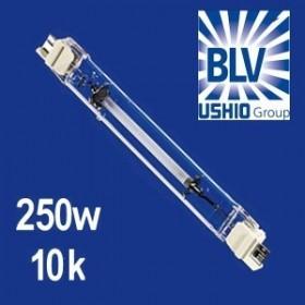 BLV Nepturion 250 Watts 10000K° FC2