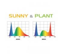 AQUAEL LEDDY SLIM DUO Sunny & Plant - 10 Watts
