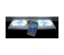 VOLX JAPAN Rampe LED GrassyCore pour aquarium Eau de mer - 142 Watts