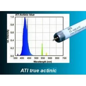 ATI Actinic 24 Watts