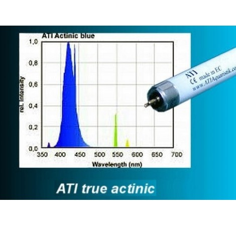 ATI Tube T5 Actinic 39 Watts 25000K° - 850mm
