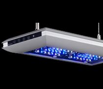 rampe eclairage pour aquarium aqualight solution. Black Bedroom Furniture Sets. Home Design Ideas