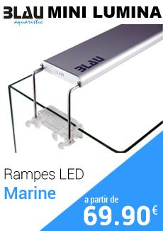 Éclairage LED Blau Mini Lumina pour aquarium eau de mer