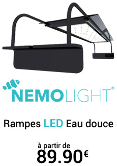 Rampes LED pour éclairage d'aquariums d'eau douce