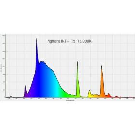 PACIFIC SUN TUBE T5 Pigment INT+ 24 Watts 18 000K° - 550 mm