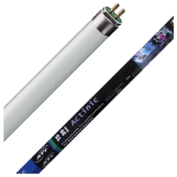 ATI Tube T5 Actinic 54 Watts 25000K° - 1150mm