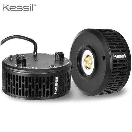Éclairage LED Kessil Spot LED